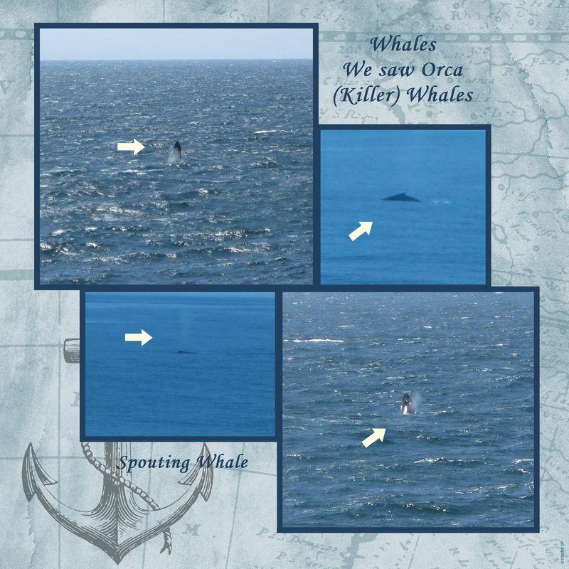 Cruise Album 2011-035