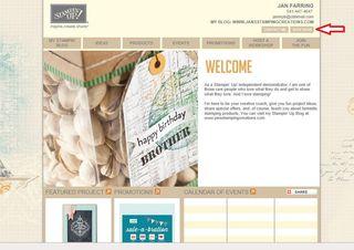 Demo website1