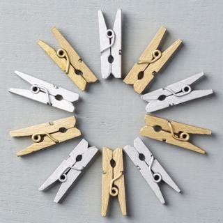 Mini Metallic Clothespins