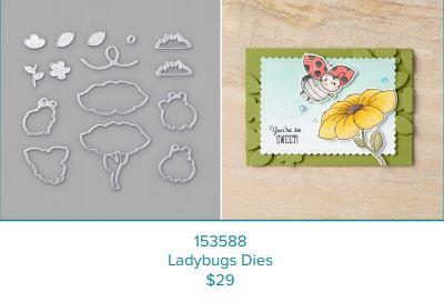 Ladybug Dies