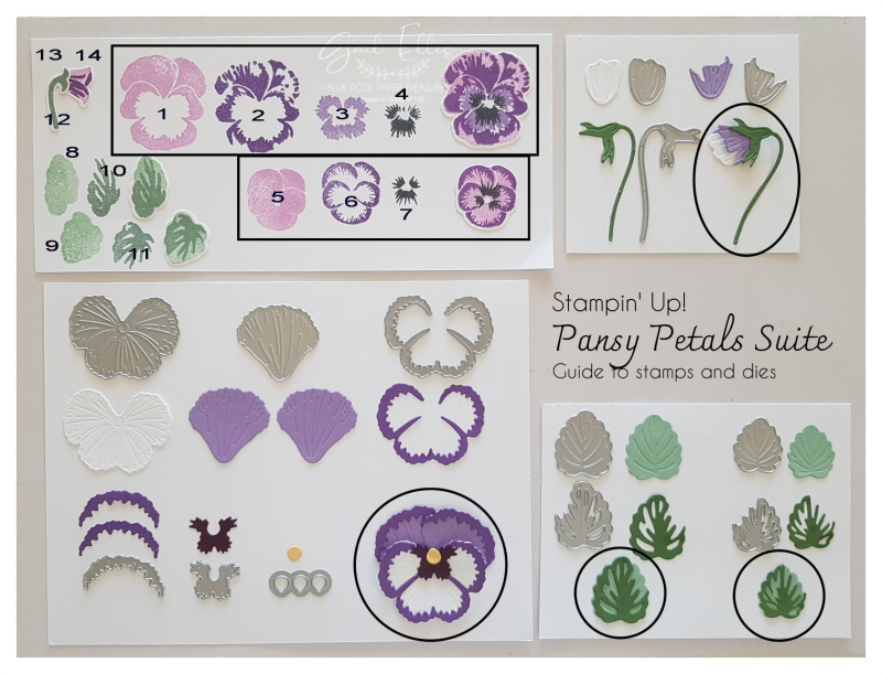 Pansy Patch